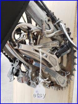 22. Taxidermie vélo 3D