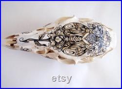Crâne de cerf Pyrogravure encre
