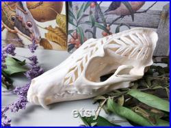 Crâne de renard roux sculpté à la main