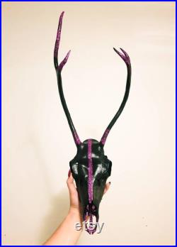 Crâne de renne