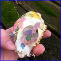 Crânes floraux et de chat de cristal