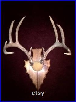 Deer Antler Mount 8 Point