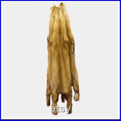 Glacier Wear Sable Pine Marten Fur Pelt Hide Golden sbl1020