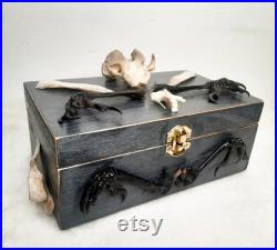 Grand kit sorcière Boîte à jewlery artisanale Taxidermie Occulte Bizarreries