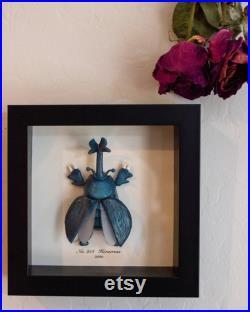 Heracross Pokemon Taxidermy Beetle Framed Wall Decor Oddities Curiosités Display Gift