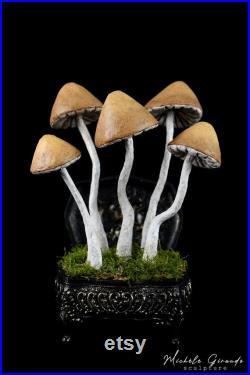 Le Coffret aux Champignons Sculpture de champignons en papier mâché Art cabinet de curiosités