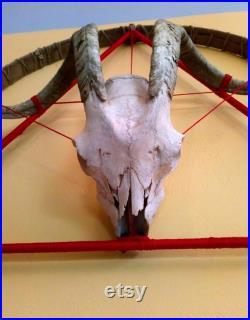 Lumière de mur de crâne de chèvre