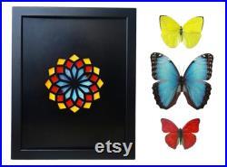 Modèle d aile de papillon réel dans la fenêtre de Kaléidoscope- jaune, rouge, morpho dans le décor réel réel noir de papillon, cadeau de papillon, cadeau de nature