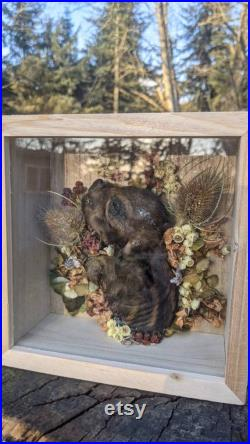 Piglet shadowbox-Peace in the Garden série