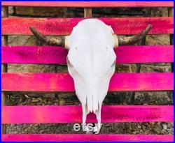 REAL Cow Skulls LIVRAISON GRATUITE décor occidental authentique Chaque pièce est différente et unique.