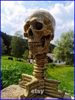 Skull Target (Bleeding 3D Target)