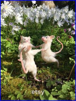 Souris dansantes