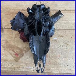 Taxidermie peinte à la main de crâne de mouton avec la corne noire, beau crâne décoratif Oddity Curio