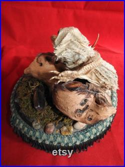Taxidermie victorienne antique de lézard avec un bug sur socle en bois