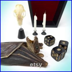 Taxidermy Bat Hanging Coffin Curiosity Shelf, Oddities, Real Bat, Décor gothique, Vampire, Oddities, Halloween, crâne d oiseau, crâne de chauve-souris