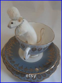 Taxidermy Teacup Mouse Lucille