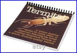 Termitat Un habitat de bureau de qualité musée pour les termites vivants
