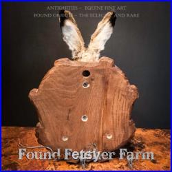 Un lièvre d hiver anglais vintage monté sur une plaque en bois sculpté