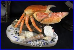 Vraie pièce de taxidermie de crabe sur un stand orné de vraies coquilles, étoiles de mer, vraies perles et verre de mer